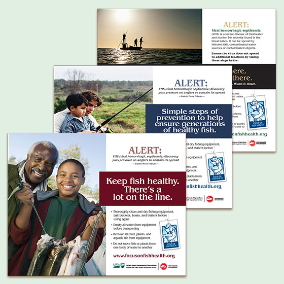 Focus on Fish Health campaign ads