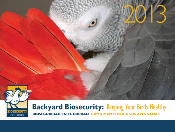 Biosecurity for Birds calendar 2013