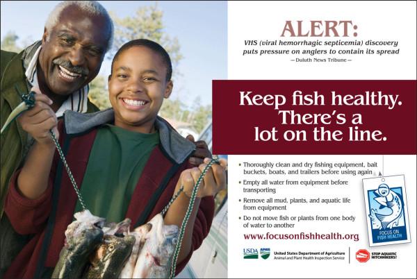 Focus On Fish Health half page ad