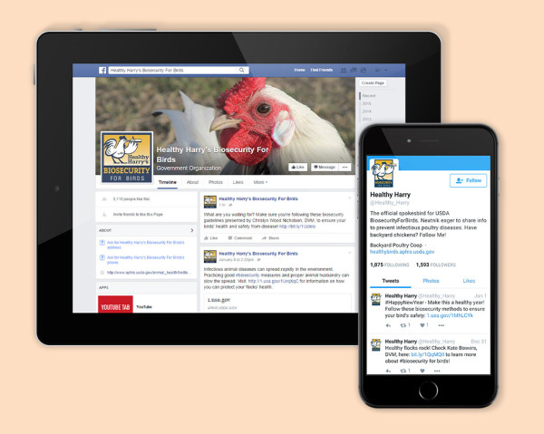 Biosecurity for Birds social media pieces